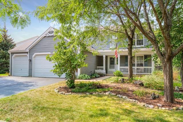 913 Audubon Lane, Aurora, IL 60506 (MLS #11215470) :: John Lyons Real Estate