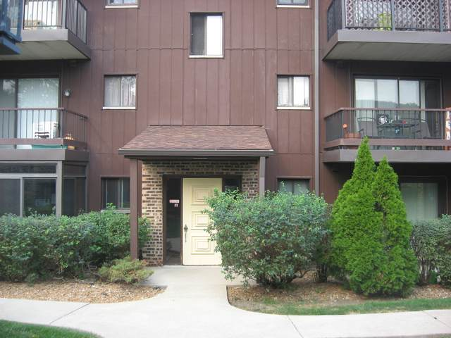60 W Pier Drive #104, Westmont, IL 60559 (MLS #11216675) :: Ryan Dallas Real Estate