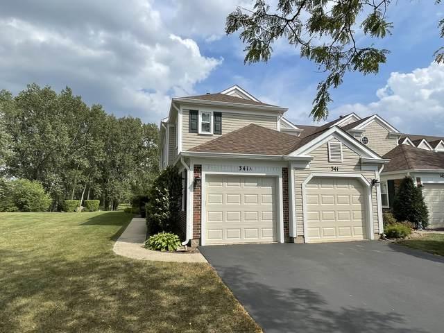 341 University Lane, Elk Grove Village, IL 60007 (MLS #11218504) :: John Lyons Real Estate