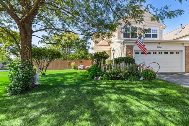 1610 Easton Court, Gurnee, IL 60031 (MLS #11219392) :: Ryan Dallas Real Estate