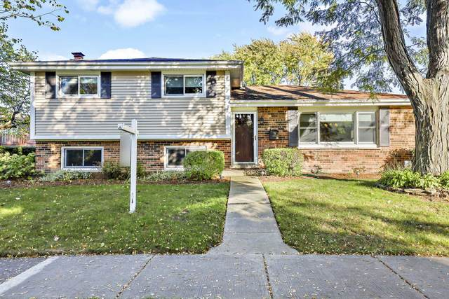 363 S Dryden Place, Arlington Heights, IL 60005 (MLS #11220828) :: The Wexler Group at Keller Williams Preferred Realty
