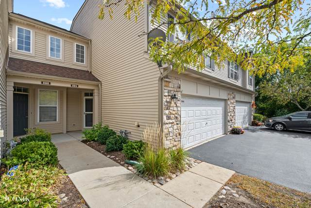 594 Shakespeare Drive #594, Grayslake, IL 60030 (MLS #11222830) :: Littlefield Group