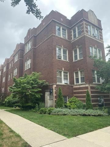 246 S Maple Avenue 2W, Oak Park, IL 60302 (MLS #11222918) :: Ryan Dallas Real Estate