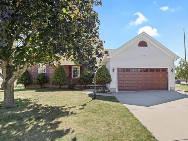 401 Wildberry Drive, Normal, IL 61761 (MLS #11223393) :: The Dena Furlow Team - Keller Williams Realty