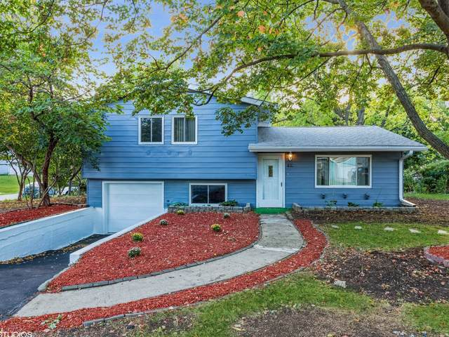 1020 Maple Street, Lake In The Hills, IL 60156 (MLS #11229441) :: Littlefield Group