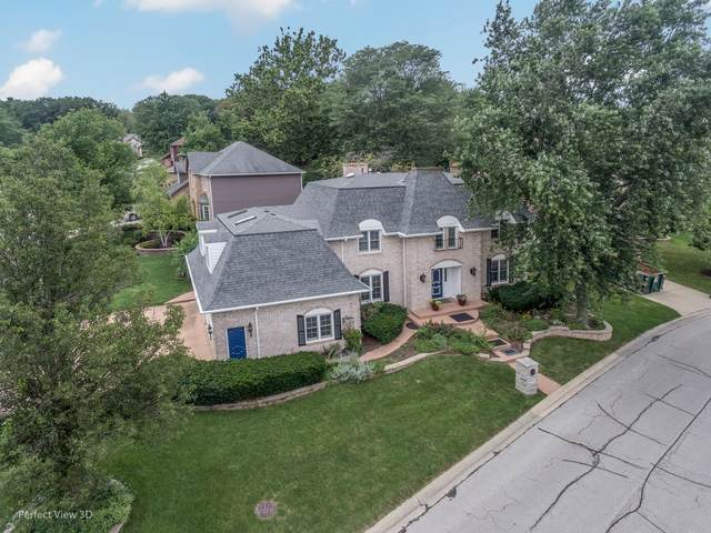 4262 White Birch Drive, Lisle, IL 60532 (MLS #11233593) :: The Wexler Group at Keller Williams Preferred Realty