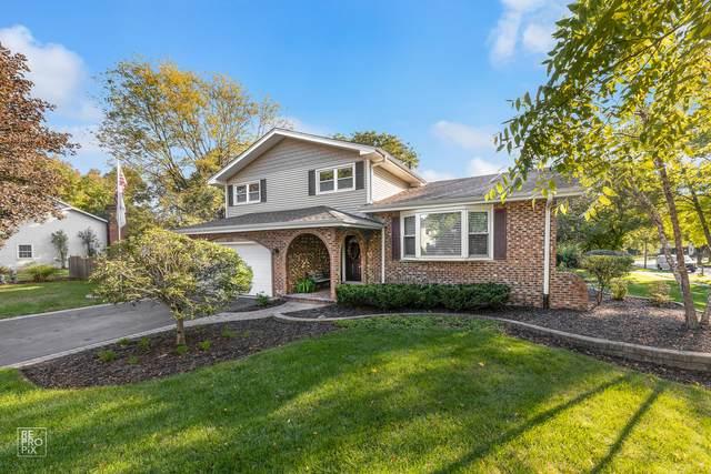 1036 Williamsburg Drive, Naperville, IL 60540 (MLS #11236395) :: Lux Home Chicago