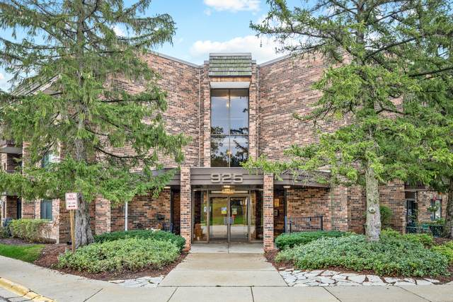 925 Spring Hill Drive #205, Northbrook, IL 60062 (MLS #11237276) :: John Lyons Real Estate