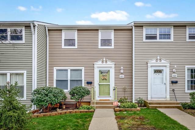 1819 Carlisle Court, Schaumburg, IL 60194 (MLS #11241110) :: John Lyons Real Estate