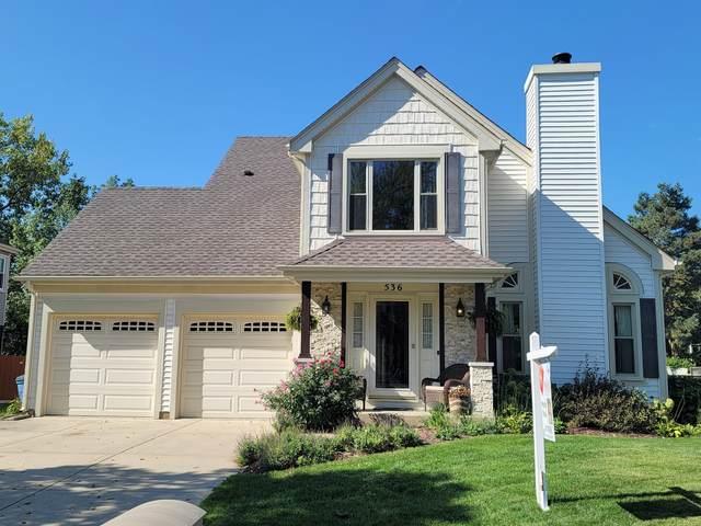 536 Newberry Drive, Elk Grove Village, IL 60007 (MLS #11241192) :: Littlefield Group