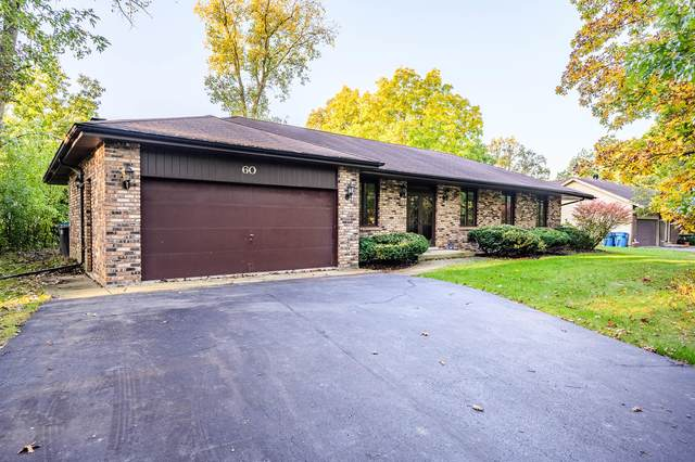 60 Cornwall Drive, Crete, IL 60417 (MLS #11246344) :: The Wexler Group at Keller Williams Preferred Realty