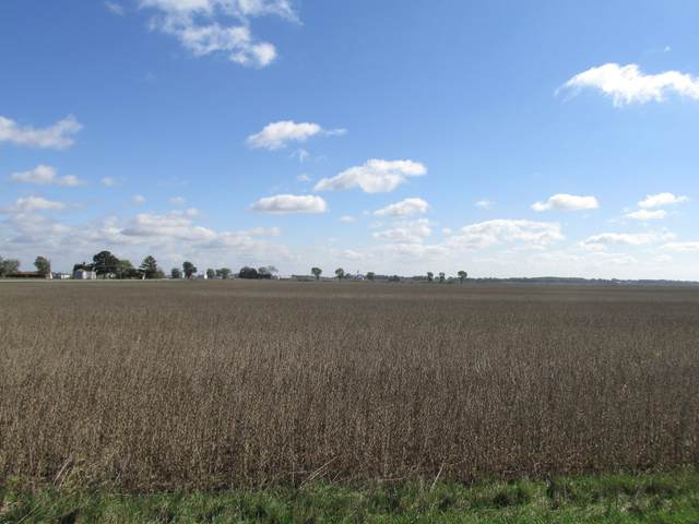 0000 Highway 92, Hooppole, IL 61258 (MLS #11247638) :: The Wexler Group at Keller Williams Preferred Realty
