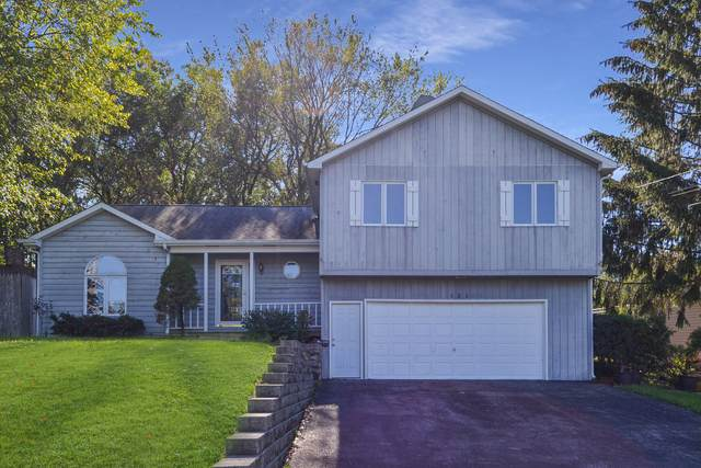 121 E Grand Avenue, Fox Lake, IL 60020 (MLS #11247683) :: Rossi and Taylor Realty Group