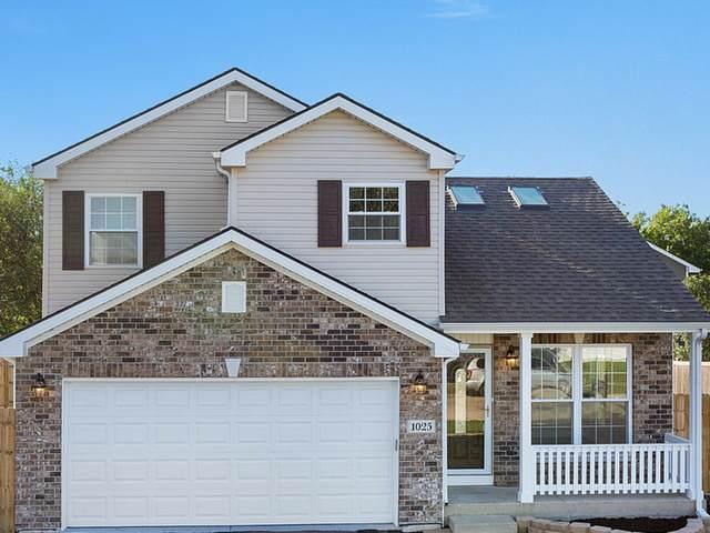 1025 Trailsend Lane, Joliet, IL 60436 (MLS #11250386) :: John Lyons Real Estate