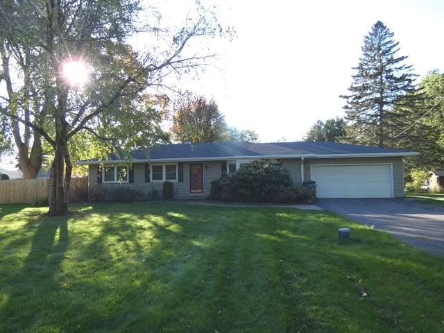 10n772 S Airlite Street, Elgin, IL 60123 (MLS #11250688) :: Ryan Dallas Real Estate