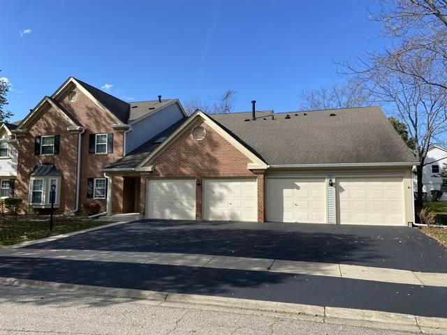 2406 Mallow Court Z1, Schaumburg, IL 60194 (MLS #11251026) :: John Lyons Real Estate