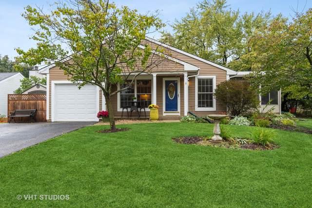 429 Travelaire Avenue, Naperville, IL 60565 (MLS #11253775) :: Lux Home Chicago