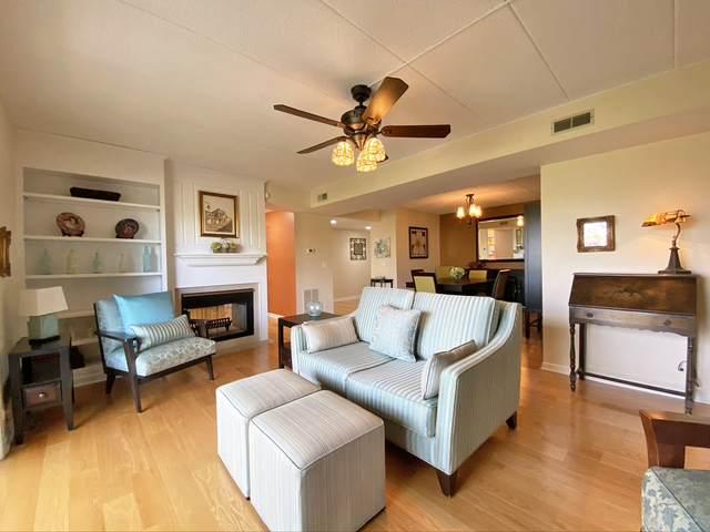 1591 E Thacker Street #401, Des Plaines, IL 60016 (MLS #11254023) :: Janet Jurich
