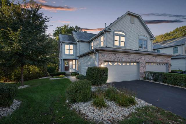 1575 Treeline Court, Naperville, IL 60565 (MLS #11254453) :: Ani Real Estate
