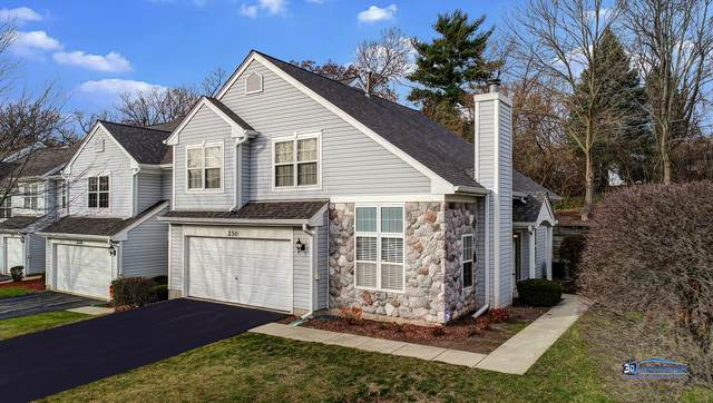 230 Rainier Way 8-230, Fox Lake, IL 60020 (MLS #10935517) :: Helen Oliveri Real Estate