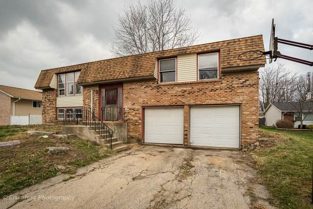 509 Whitby Court, Bolingbrook, IL 60440 (MLS #10937645) :: BN Homes Group