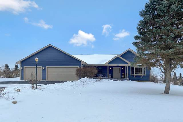 9006 Anthony Lane, Spring Grove, IL 60081 (MLS #10938645) :: Schoon Family Group