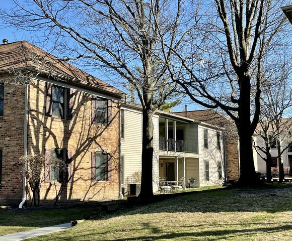 1761 Sessions Walk H, Hoffman Estates, IL 60169 (MLS #10981276) :: The Spaniak Team