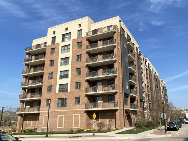 300 Anthony Avenue #405, Mundelein, IL 60060 (MLS #10991810) :: Helen Oliveri Real Estate