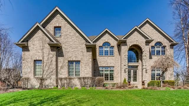 21580 W Mocking Bird Court, Kildeer, IL 60047 (MLS #10997244) :: O'Neil Property Group