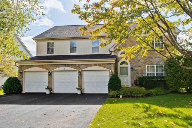 8044 Cripple Creek Drive, Long Grove, IL 60047 (MLS #11010138) :: Helen Oliveri Real Estate