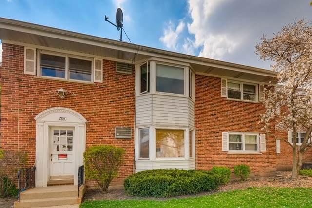 206 N Somerset Lane 2E, Arlington Heights, IL 60005 (MLS #11050021) :: Helen Oliveri Real Estate