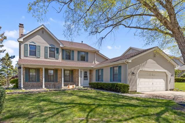 207 Lundy Lane, Schaumburg, IL 60193 (MLS #11079607) :: Helen Oliveri Real Estate