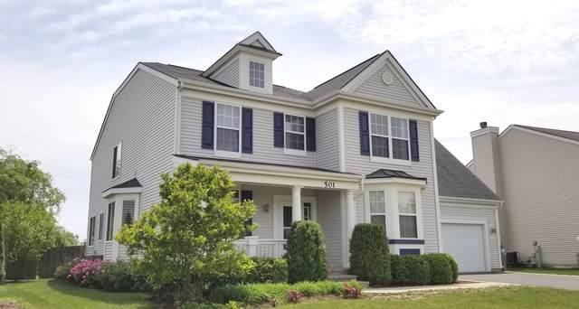 501 W Cambria Drive, Round Lake, IL 60073 (MLS #11089974) :: O'Neil Property Group