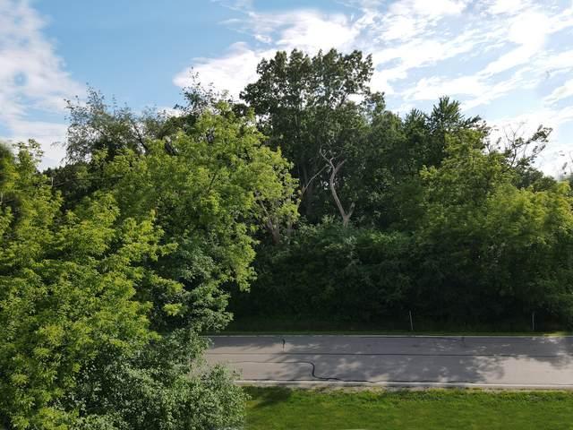 0 Wiant Road, Bartlett, IL 60103 (MLS #11093491) :: Ani Real Estate