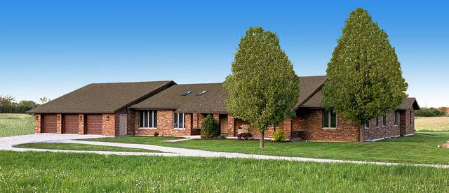 23247 S 104th Avenue, Frankfort, IL 60423 (MLS #11103808) :: Schoon Family Group