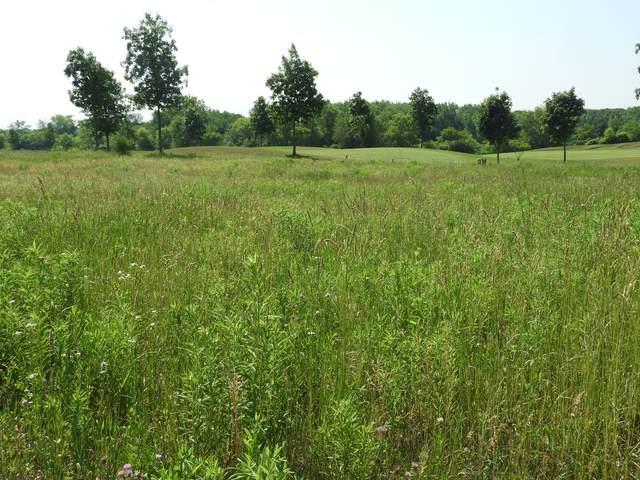 17507 Granite Drive, Marengo, IL 60152 (MLS #11118917) :: John Lyons Real Estate