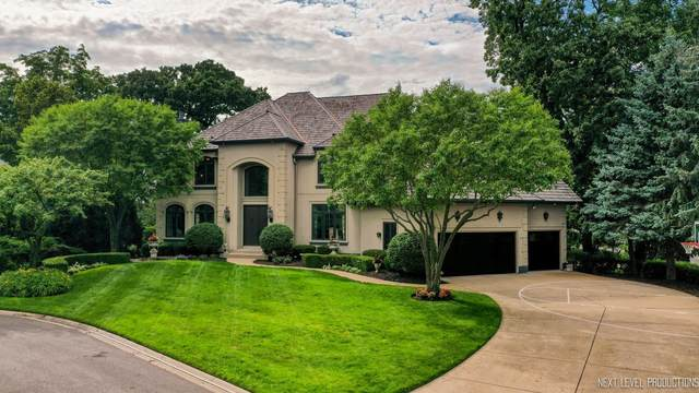 203 Settlers Court, Naperville, IL 60565 (MLS #11125564) :: The Wexler Group at Keller Williams Preferred Realty