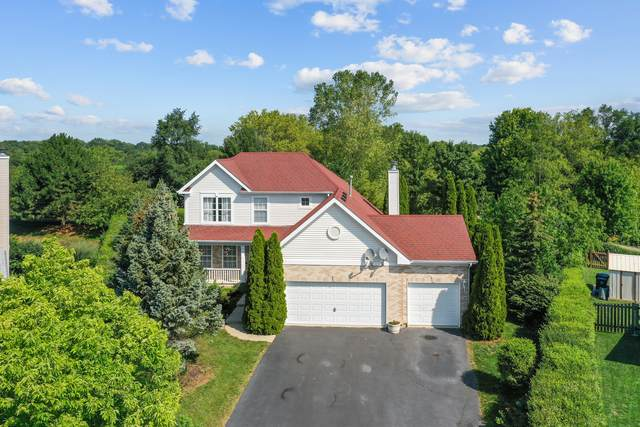 12 Winding Canyon Court, Algonquin, IL 60102 (MLS #11195298) :: O'Neil Property Group