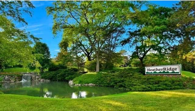 930 Taylor Drive #410, Gurnee, IL 60031 (MLS #11227373) :: Suburban Life Realty