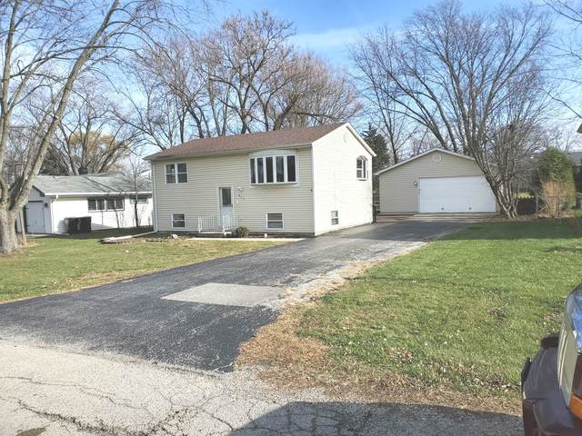 217 Countryside Lane, Lindenhurst, IL 60046 (MLS #10937540) :: BN Homes Group