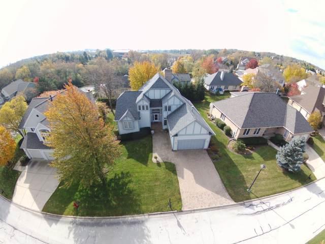 1159 S Hiddenbrook Trail, Palatine, IL 60067 (MLS #10964525) :: Suburban Life Realty