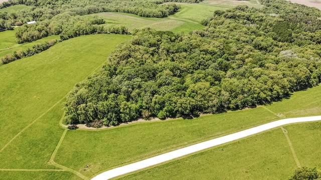 Lot 10 Foxwood Drive, Mt. Carroll, IL 61053 (MLS #11009916) :: John Lyons Real Estate