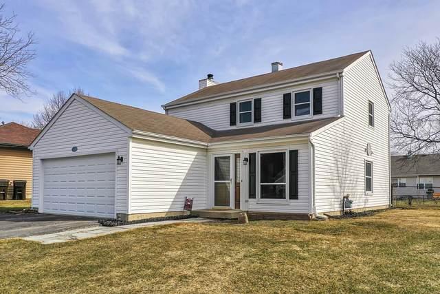 586 Cortland Drive, Lake Zurich, IL 60047 (MLS #11013099) :: Helen Oliveri Real Estate