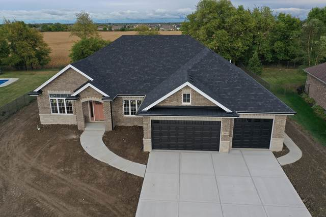 20011 Aine Drive, Frankfort, IL 60423 (MLS #11095498) :: The Wexler Group at Keller Williams Preferred Realty