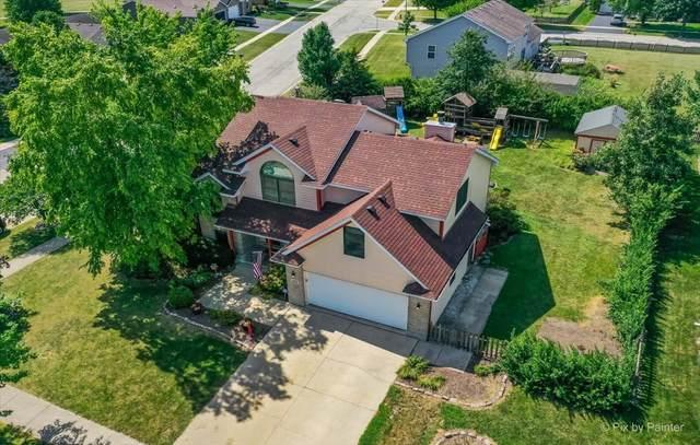 401 Prairie View Lane, Hinckley, IL 60520 (MLS #11184544) :: John Lyons Real Estate