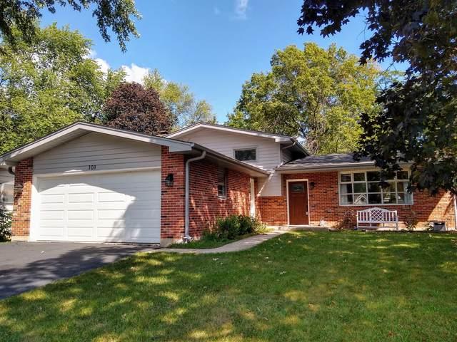 101 Rose Tree Lane, Lindenhurst, IL 60046 (MLS #11200325) :: John Lyons Real Estate