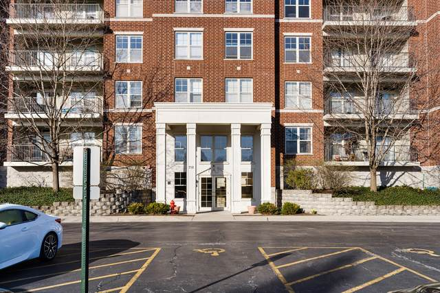 715 Astor Lane #201, Wheeling, IL 60090 (MLS #11040983) :: Littlefield Group