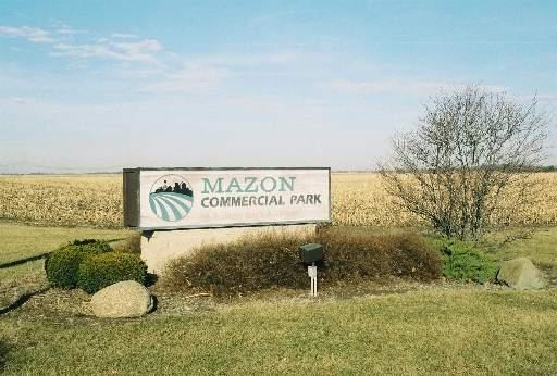 LOT 6 Industry Parkway, Mazon, IL 60444 (MLS #08107367) :: Suburban Life Realty