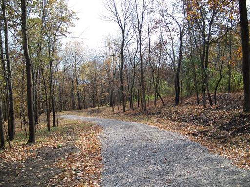 Lot 5 Thirty Foot Trail Road - Photo 1