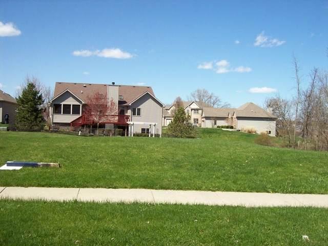 1137 Oak Point Court, Antioch, IL 60002 (MLS #08900078) :: Littlefield Group